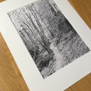 Beaulieu Wood Print