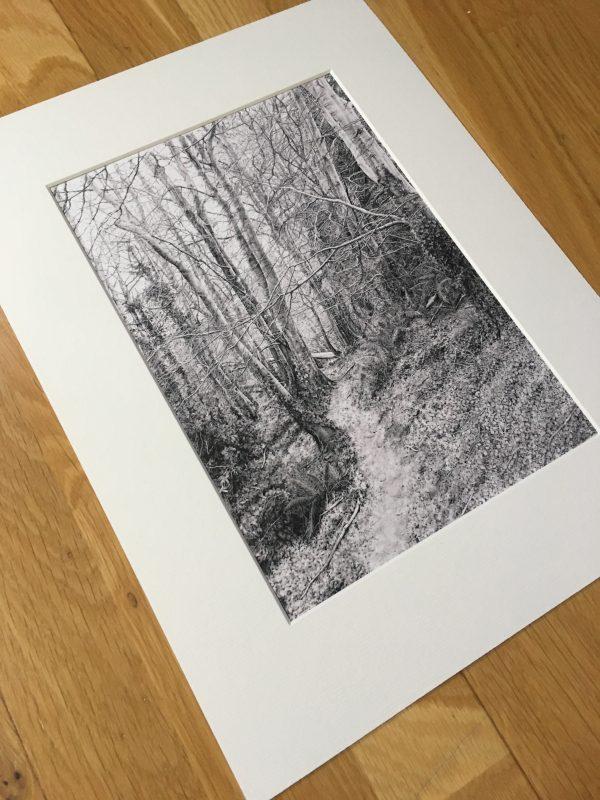 Beaulieu Wood Print